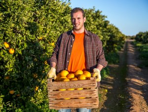 man with a crate of oranges